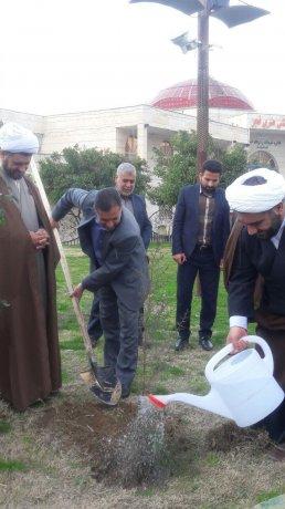 کاشت سه هزار اصله درخت و نهال به مناسبت هفته درختکاری در میادین و پارک های سطح شهر
